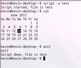 script-terminal